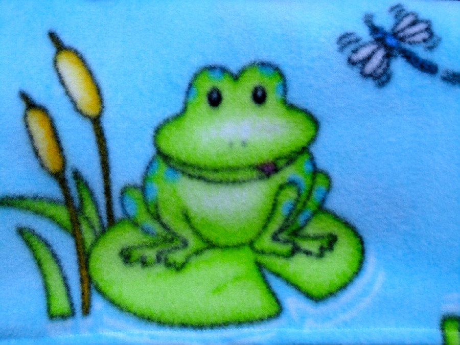 Fleece Baby Blanket: Handmade Bedding for Babies Dragonflies, Frogs, Animal Print Theme (30x40inches)