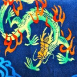 Fleece Toddler / Baby Blanket 'Chinese Dragons' BUG HUG for Boys & Girls
